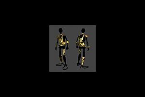 D A R Chonn E 5 Armor Precious