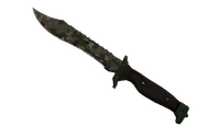 ★ Bowie Knife | Forest DDPAT (Well-Worn)