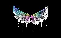 Sealed Graffiti | Wings