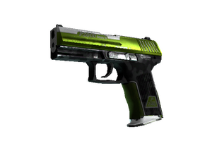 P2000 | Turf (Field-Tested)