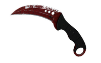 ★ StatTrak™ Talon Knife | Crimson Web (Field-Tested)