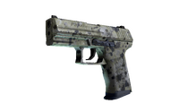 P2000 | Granite Marbleized (Factory New)
