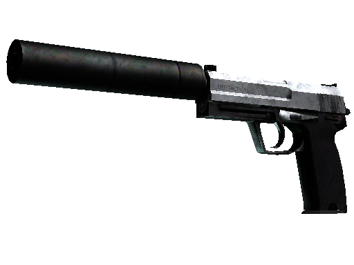 USP-S | Stainless (Battle-Scarred)