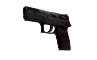 P250 | Contaminant (Battle-Scarred)