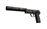 USP-S | Ancient Visions (Factory New)