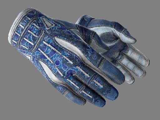 ★ Sport Gloves   Amphibious (Battle-Scarred)