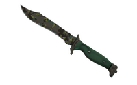 ★ Bowie Knife | Boreal Forest (Well-Worn)
