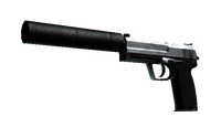 USP-S   Stainless (Battle-Scarred)