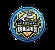 Наклейка   Copenhagen Wolves   Кёльн 2014