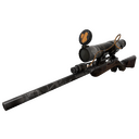 Night Owl Sniper Rifle (Battle Scarred)
