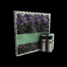 free tf2 item Macabre Web Mk.II War Paint (Well-Worn)