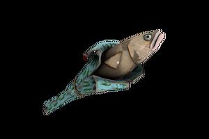 Unusual Croc Dusted Holy Mackerel Well Worn