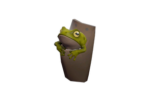 Tropical Toad