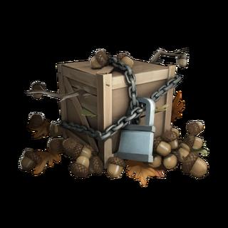Fall 2013 Acorns Crate Series #72
