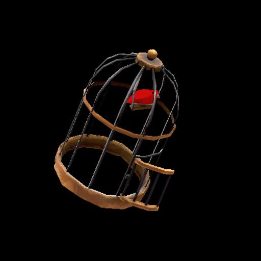 Unusual Birdcage Steaming