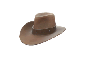 Strange Hat With No Name