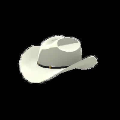 Большая техасская шляпа