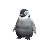 Pebbles the Penguin