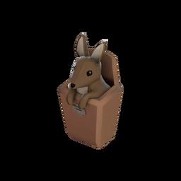 Strange Wally Pocket