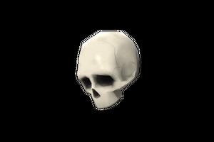 Strange Bonedolier