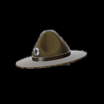 Компанейская шляпа