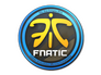Skin Sticker | Fnatic | Cologne 2014
