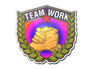 Skin Sticker | Teamwork (Holo)