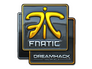 Skin Sticker | Fnatic (Foil) | DreamHack 2014
