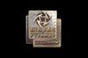 Sticker | Ninjas in Pyjamas (Holo) | DreamHack 2014