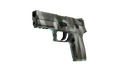 P250 - Bone Mask