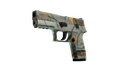 P250 - Modern Hunter