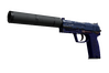 USP-S | Royal Blue (Well-Worn)