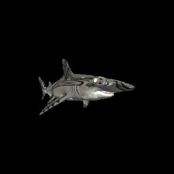 Hammerhead_ Shark _Skins