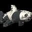 Great White - Panda