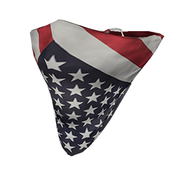 Skin: All American Face Bandana