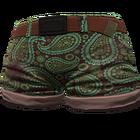 Aqua Paisley Shorts